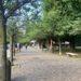 Biella. Giardini Zumaglini: l'ineffabile ricetta del sindaco Corradino contro il crimine, via Wi-Fi e alberi...